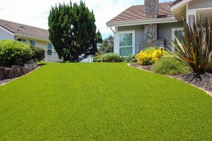 artificial turf installed in San Diego home front yard with landscaping