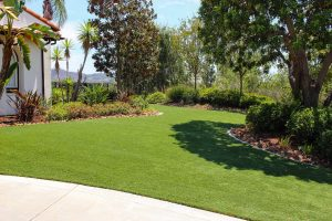 Artificial turf installed at luxury home, side yard with trees