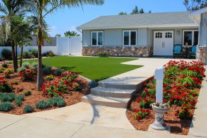 Artificial turf in front yard with landscaping