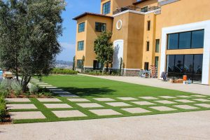 artificial turf yard large residential unit