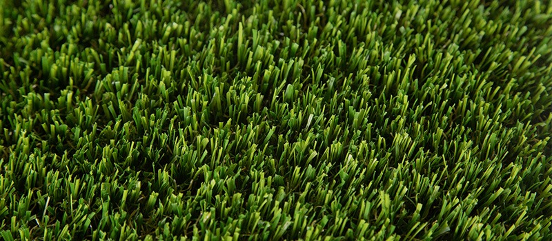 Catalina Premium Turf Product Image 3