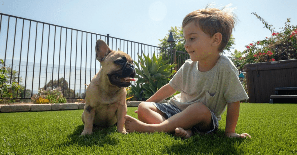 Dog and child playing on USTurf artificial grass