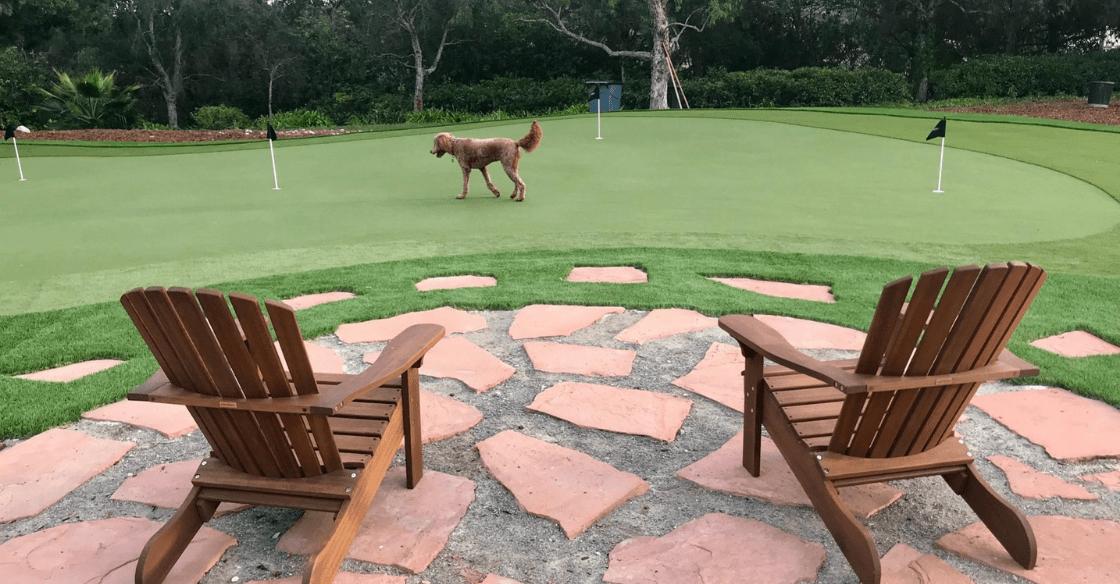 artificial turf putting green