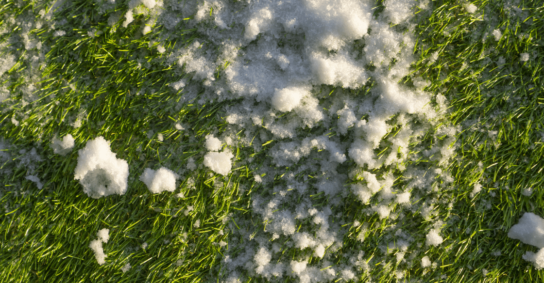 Snow on synthetic turf